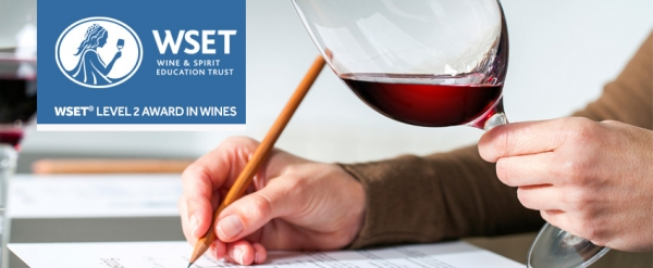 WSET LEVEL 2 - AWARD IN WINES